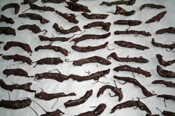 chocolate_covered_peel